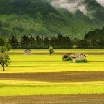 pomysł na biznes na wsi
